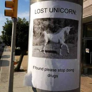 lost unicorn his name is butterfly